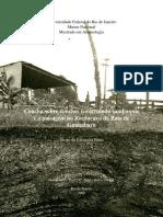 Diogo2009.pdf