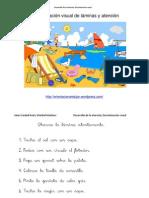 Desarrollo de La Atencion Discriminacion Visual Con Laminas 1 Playa