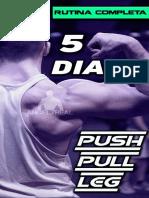 Push Pull Leg 5 Dias Avanzada