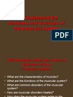 1.05 Understand the Functions and Disorders of the Muscular System