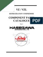 VZ_VZL.pdf