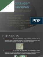 Oxiuriasis y Ascariasis
