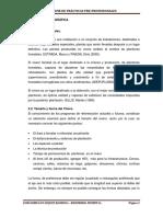 Informe Practicas Preprofecionales Ghermancorregido[1]