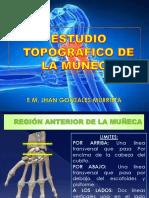 11 Región Muñeca