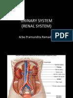 4&5.Urinary System