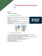 cepljenje sadnih rastlin.doc
