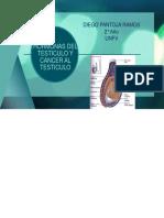 HORMONAS DEL TESTICULO Y CANCER AL TESTICULO.pptx