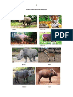 Fauna Di Indonesia Bagian Barat