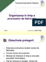 Organizarea in Timp a Fabricatiei