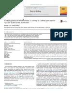 Carbon Revenues-taxes-cap & Trade SMART CITY