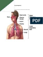 bronkopneumonia.docx