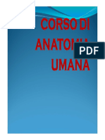 Univ Magna Charta Corso_di_Anatomia_Umana (1)
