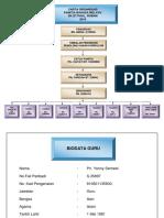 Carta Organisasi Bm