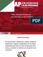 SEMANA I - BASES TEORICAS DE LAS PRUEBAS PROYECTIVAS.pdf