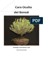 La Car a Ocult Adel Bonsai