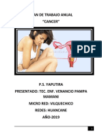 Plan de Trabajo Anual Cancer