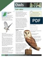 Eagles 23014.pdf
