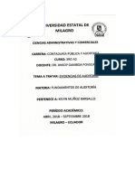 Evidencias de Auditoria, Programas de Auditoria y Papeles de Trabajo