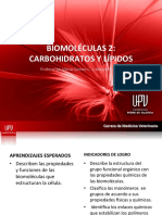 Clase de Carbohidratos y Lípidos