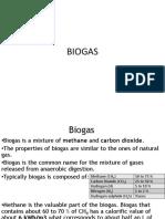 Biogas Digester_Final.pdf