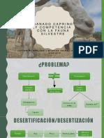 cabrass medioambiente.pptx