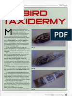 Carl Church Bird Taxidermy - The Falconers & Raptor Conservation Magazine Issue 66