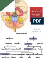 Anatomi Ganglia Basalis