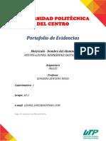 Portafolio Hernandez Castañeda Leonel