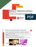 MODULO 4_Lección 2 - Características Generales e Histología