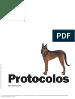 Protocolos de Disección Anatomía Del Perro (3a. Ed... ---- (Pg 21--250)