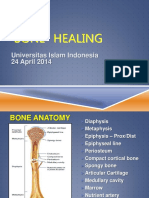 BONE Healing Uii 24 April 2014