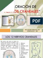 Semiología Neurología Pares Craneales