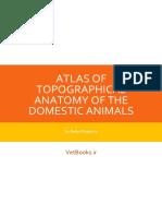 Atlas of Topographical Anatomy of the Domestic Animals (Vetbooks.ir)