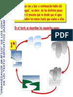 Adaptación Organizadores Graficos.pdf