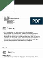 PPT Exposición -Proyectos