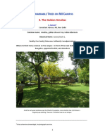 Success Formula Academic PDF v7 Trial