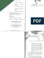 Pisco Institucional Livro 2 (1)