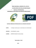 Especies Herb. Intrid. en La Amazonia Peruana