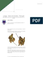 História Concisa Da Vila de Loriga  2 Concise History of Loriga
