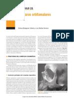 Cirugía Oral y Maxilofacial2012.pdf