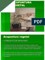 Acupuntura Vegetal PORTUGUES -edoc site 30.pdf