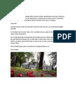 Patrimonio cultural de lota.docx