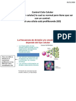 2.- Control Ciclo Celular y Cancer (Transcrito)