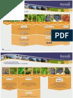 Recomendaciones de bioestimulantes para viñedos