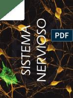 Clase 6 Sistema Nervioso