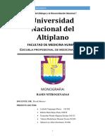 Monografia Bases Nitrogenadas 2