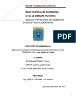 Elaboracion de Nectar de Fruta Tropical Fortificado Con Chia en El Distrito de Chilete.