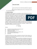 Guía P4. Pérdidas Mayores.pdf