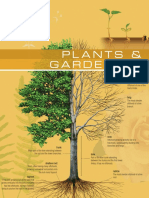 The Visual Dictionary of Plants & Gardening.pdf
