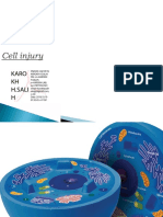 1. Cell Injury